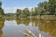 Dunakeszi tőzegbánya tavak